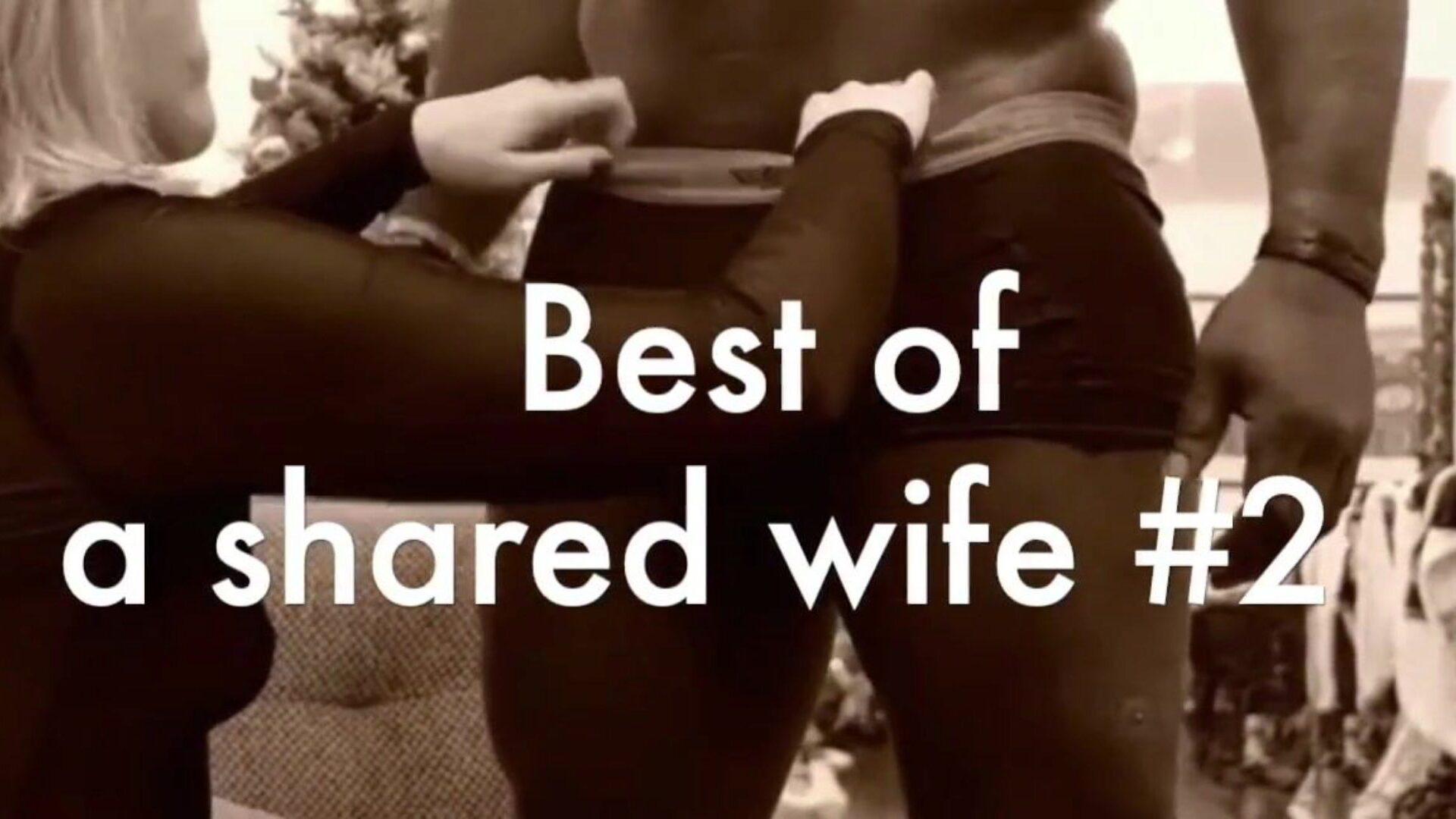 Www Wife Sharing Com